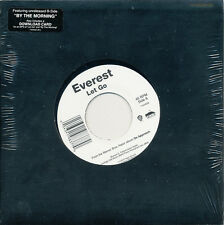 "Everest Let Go / By The Morning RARE SEALED promo 7"" vinyl '10"