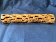 "NEW! CHOLLA WOOD 6"" Thick Pre-Soaked Clean for Aquariums and Air Plant Display"
