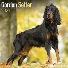 Gordon Setter Calendar 2021 Premium Dog Breed Calendars