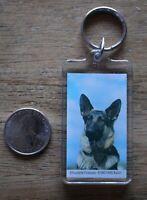 German Shepard K-9 Puppy Dog Cute Keychain Key Ring #27825