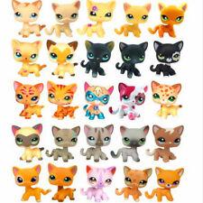 Littlest Pet Shop Rare LPS Toys Short Hair Cat Kitten Collection Figures Gifts