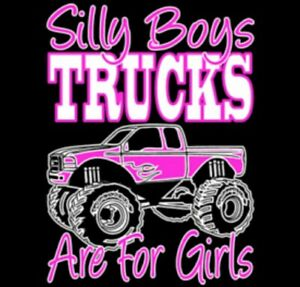 Cowboys And Angel's Outfitters TShirts (Women) (Many Styles)