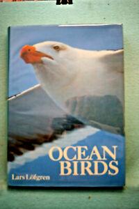 Ocean Birds - Lars Lofgren - Large Hardbound