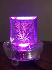 Captured Lightning Lichtenberg created by Raw Electricity with lighting base