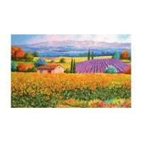 500 Piece Jigsaw Puzzle Countryside Field Sunflower Landscapes Lavender M6B5