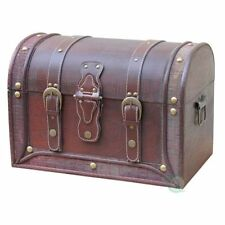 Leather Antique Style Trunks and Chests