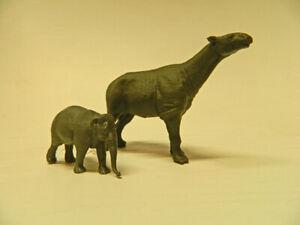 Paraceratherium and Asian Elephant -for size comparison  1/72 scale!