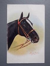 Horse J Salmon Single Collectable Animal Postcards