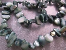 Green Mother Of Pearl Shell Freeform Beads 67pcs