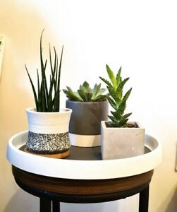 Indoor plant pot ROTATING TRAY SPINNING DISPLAY stand white waterproof plastic