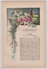 Originaldrucke (1800-1899) aus Europa mit Blumen- & Pflanzen-Motiv