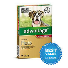 Advantage for Large Dogs 10-25kg Red 12 Pack for fleas