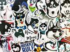 50 Husky Dog Sticker Bomb For Skateboard Laptop Phone Skin Lot Set Decals