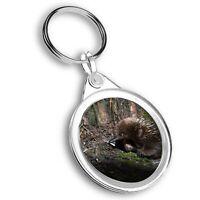 Keyring Circle - Short Beaked Echidna Cradle Mountain Tasmania  #46294