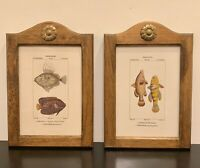 Pair Of Antique Victorian Wood Frames Turpin French Engravings colorful Fish