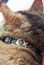 Funny Humor Grumpy Cat Collar Bitch 😺