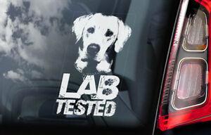 LAB TESTED - Car Window Sticker - Labrador Retriever on Board Golden Decal - V01