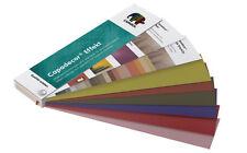 Caparol Capadecor Effekt Farbblock - Musterflächen von Effektbeschichtungen