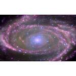Diverse Universe