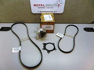 Toyota Echo 2000-2005 Water Pump and Drive Belt Kit Genuine