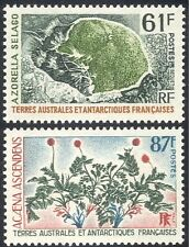 FSAT/TAAF 1973 Azorella selago/Acaena ascendens/Plants/Nature/Flowers 2v n30218