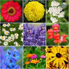 2500 Samen Sommer Blumenmischung Bienenweide bunte Blumenwiese Bauerngarten