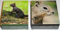 Palau 2 x 1 Oz Silber Red Squirrel + Barbary Ground Squirrel im Etui