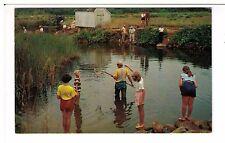Postcard: Crab Creek, Dennis, Cape Cod, Massachusetts, USA