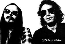 Steely Dan Poster, Jazz, Rock Music
