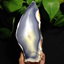 TOP!!! 1027g Natural rare EXQUISITE Agate Slices-Crystal Healing @17