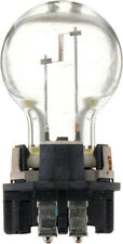 Back Up Light Bulb-Standard - Single Commercial Pack Philips PW16WHTRC1