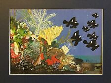 Painting of a Reef Scene with Black Fish - Signed with Inscription on the Back