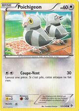 Poichigeon - N&B:Frontieres Franchies - 123/149 - Carte Pokemon Neuve Française