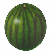 VETRO a forma di Frutta AD AFFETTARE TAGLIARE SERVIRE BOARD elegante Preparato da Cucina