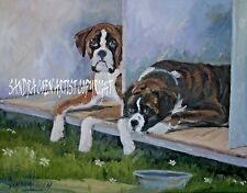 BOXER DOGS NEW ORIGINAL OIL PAINTING SANDRA COEN ARTIST CANVAS SPECIAL OFFER