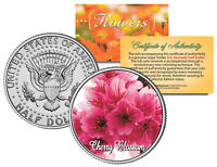 CHERRY BLOSSOM FLOWER JFK Kennedy Half Dollar US Colorized Coin