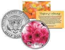 CHERRY BLOSSOM FLOWER JFK Kennedy Half Dollar US Colorized Coin