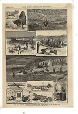 Dec 9 1882 Leslie'S Illustrated Seal Industry In The Bearing Sea Ad Print G153
