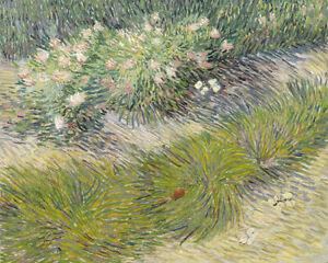 Vincent van Gogh Print Grass and Butterflies