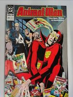 Animal Man #24 DC Comics Morrison