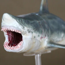 PNSO Ancient Ceatures Dinosaur King Megalodon Model Shark Statue In Stock New
