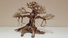 Bonsai Tree Ornament Aquarium Decoration - Real Wood - Medium - Approx 20 x 15CM