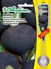 Rettich 'Runder schwarzer Winter' Winterrettich schwarz  Samen 40537