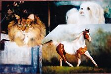 """Karen Patton """"Painting the Cat, Dog and Horse"""" Dvd New"""