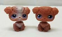 Littlest Pet Shop Poodle Puppy Dog Brown #37 #39 Tan Pink Purple Eyes Magnet Lot