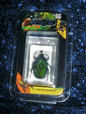 """Real Bug"" > Green Chafer Beetle > Paperweight PW112 > Kids love 'em!! > NEW"
