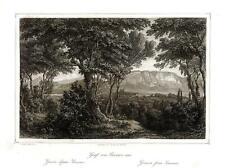 Incisione antica e originale Ulrich Huber 1856 Ginevra  Sacconez Svizzera