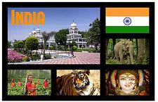 India - Recuerdo Original Imán de Nevera - Monumentos /Ciudades/Banderas/Nuevo/