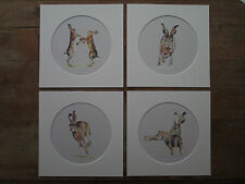 """Hare watercolour prints, set of 4,  in 8""""x 8"""" mounts, grey background"""