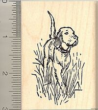 Lg. English Setter in Field Rubber Stamp J8416 Wm